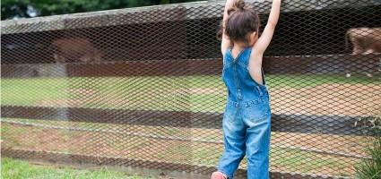 """""""El niño intenta transgredir la prohibición para afirmarse y hacer la experiencia de lo que le dicen que es peligroso... porque ser una persona humana es eso"""""""